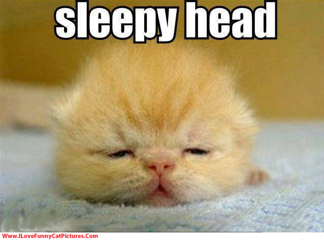 sleepy-head